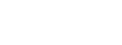Wireless Vision
